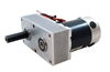 AmpFlow F30-150 Motor with Speed Reducer